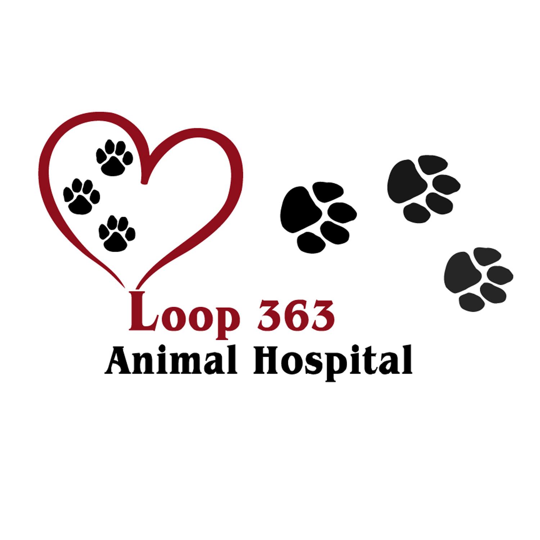 Loop 363 Animal Hospital - Temple, TX