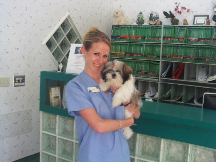 VCA Gulf Bay Animal Hospital image 6