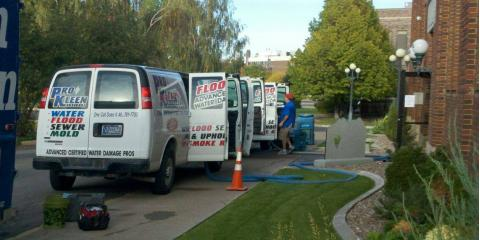Pro Kleen Services image 0