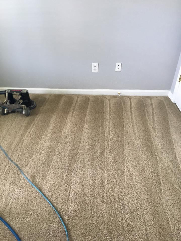 Stains Be Gone Carpet Cleaning, LLC image 9