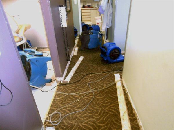 Floodmasters image 4