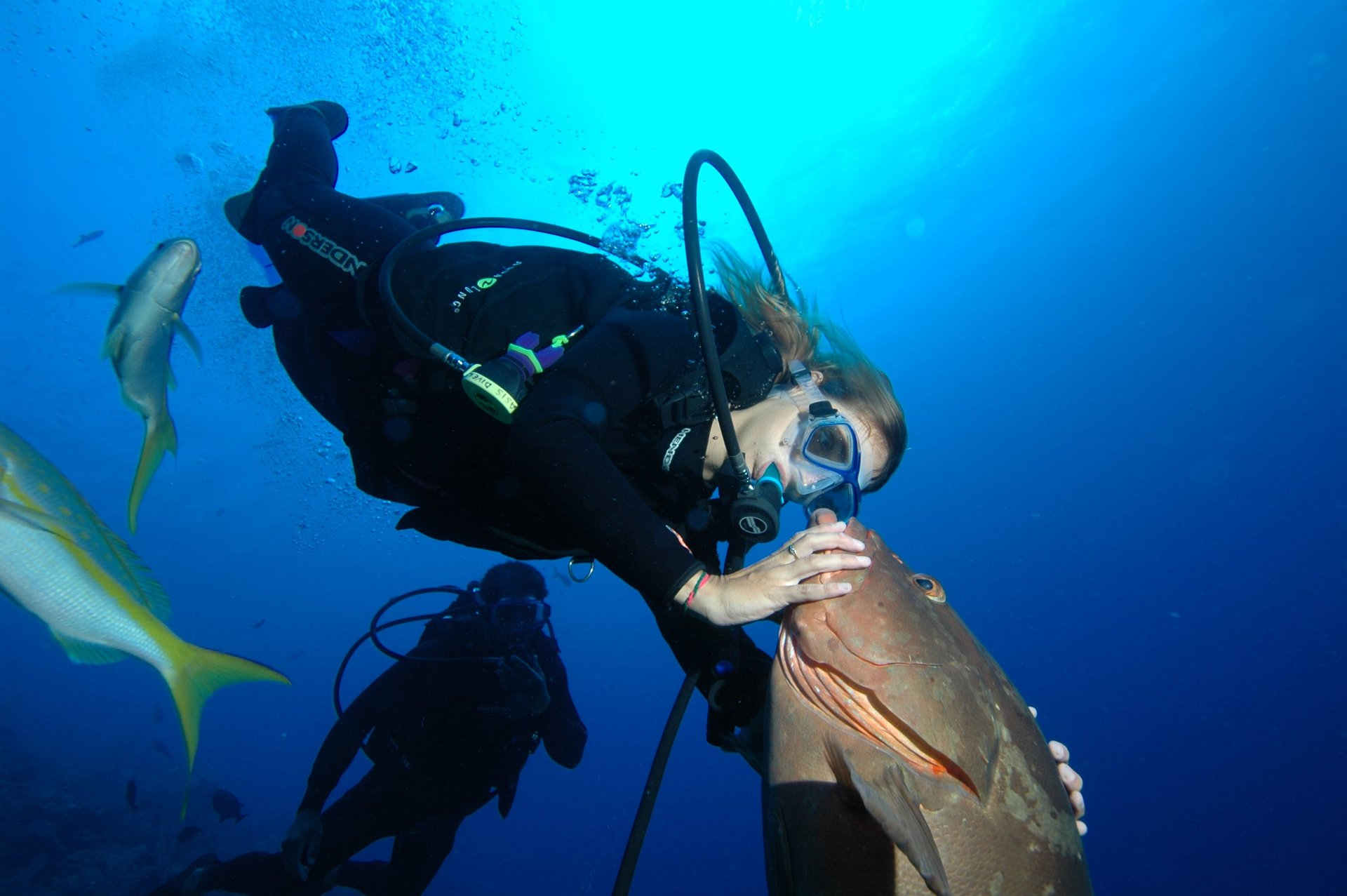 Underwater World Scuba Center image 7