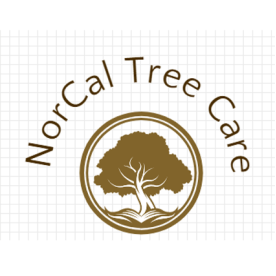 NorCal Tree Care