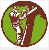 Hendrixson Tree Service image 2