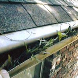 MN Gutter Cleaning Service Near Me image 23
