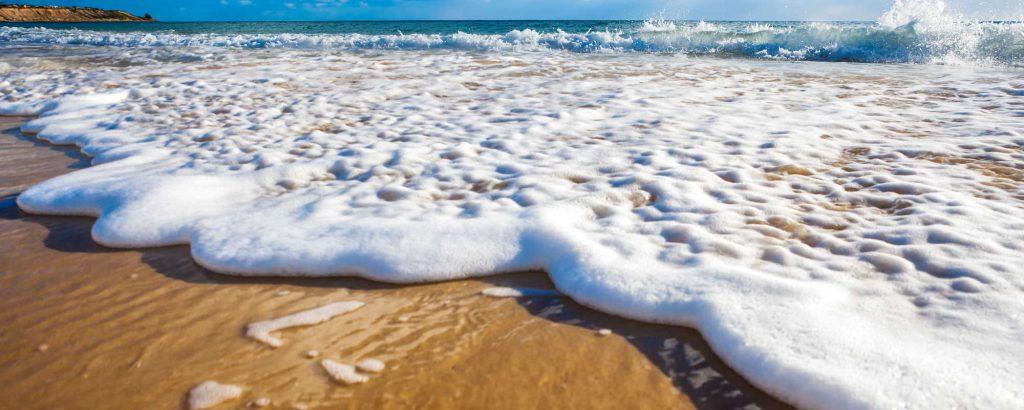 La Jolla Vacation Rentals image 45