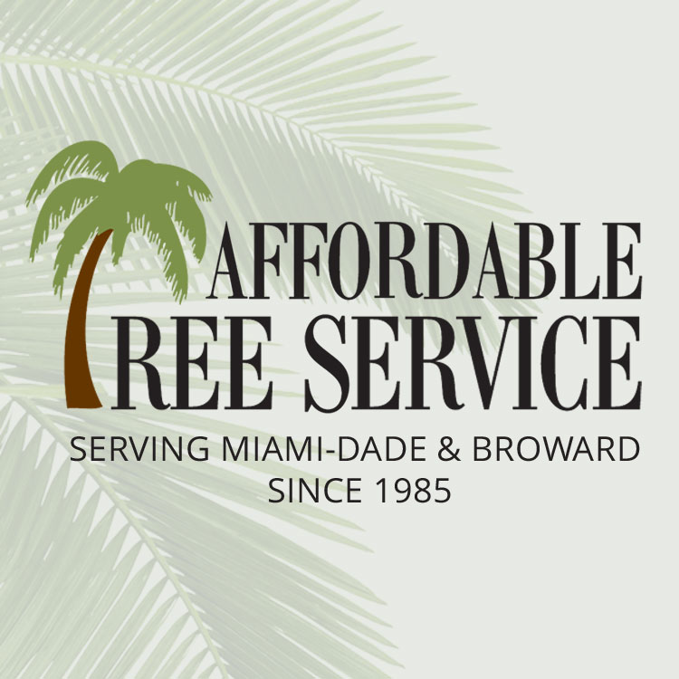 Affordable Tree Service Inc. - Tree Service Miami