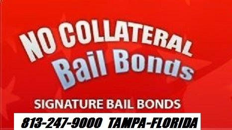 No Collateral Bail Bonds Corp. image 4