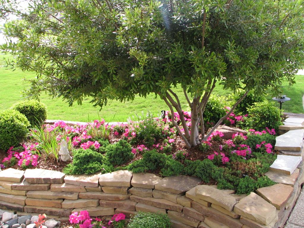 Plm professional landscape management carrollton tx for Garden design landscaping farmers branch