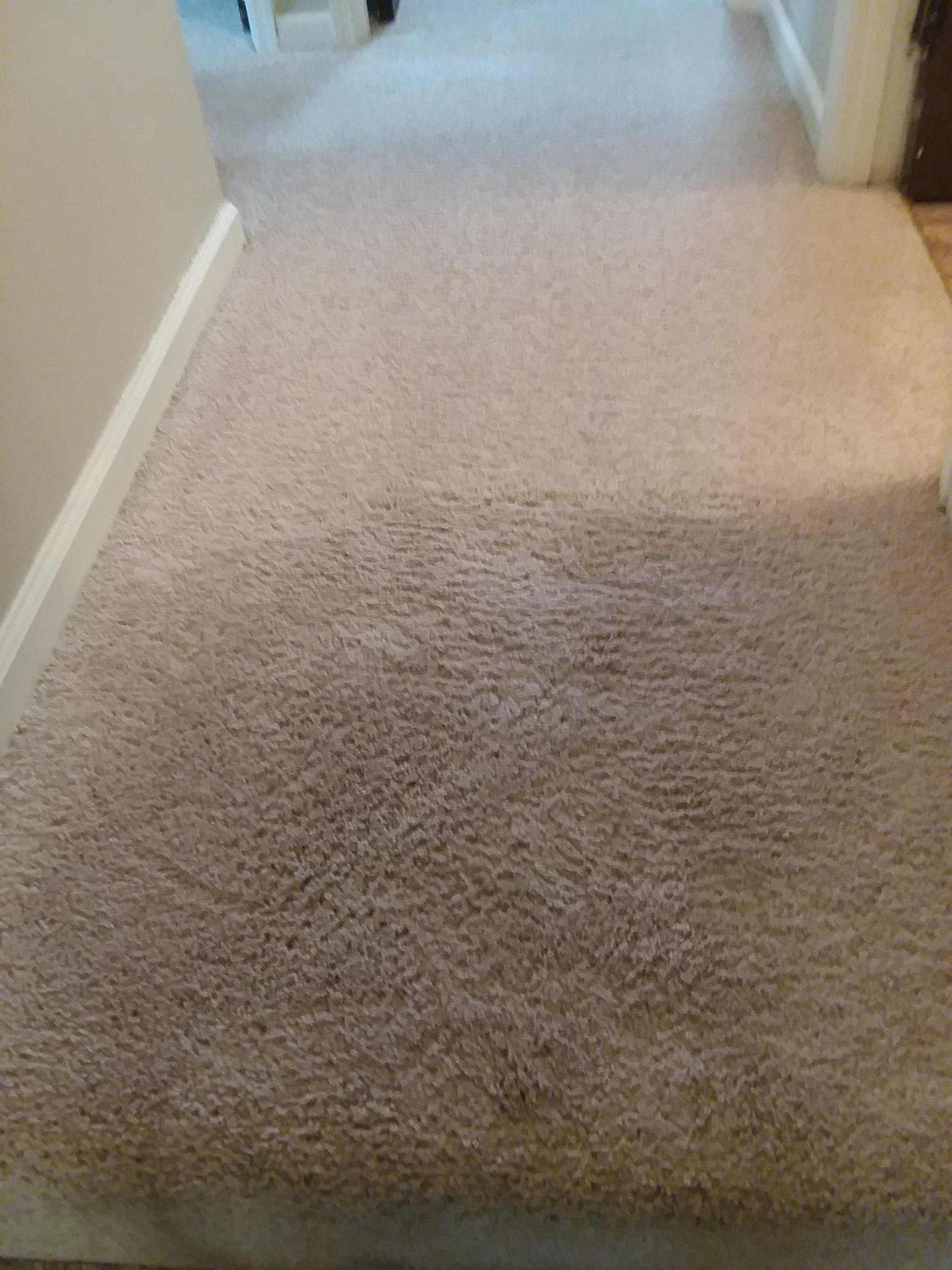 Clean Rite Carpet Cleaning image 45