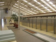 Image 5 | VCA Sawmill Animal Hospital