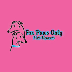 For Paws Only Pet Resort Inc image 0