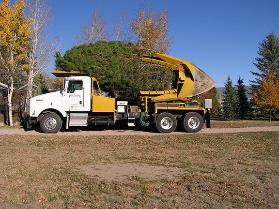 Bowman Tree Moving, Inc. image 1