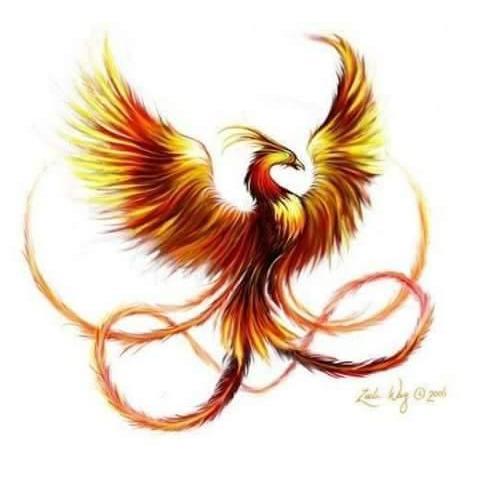 Phoenix Properties and Restoration