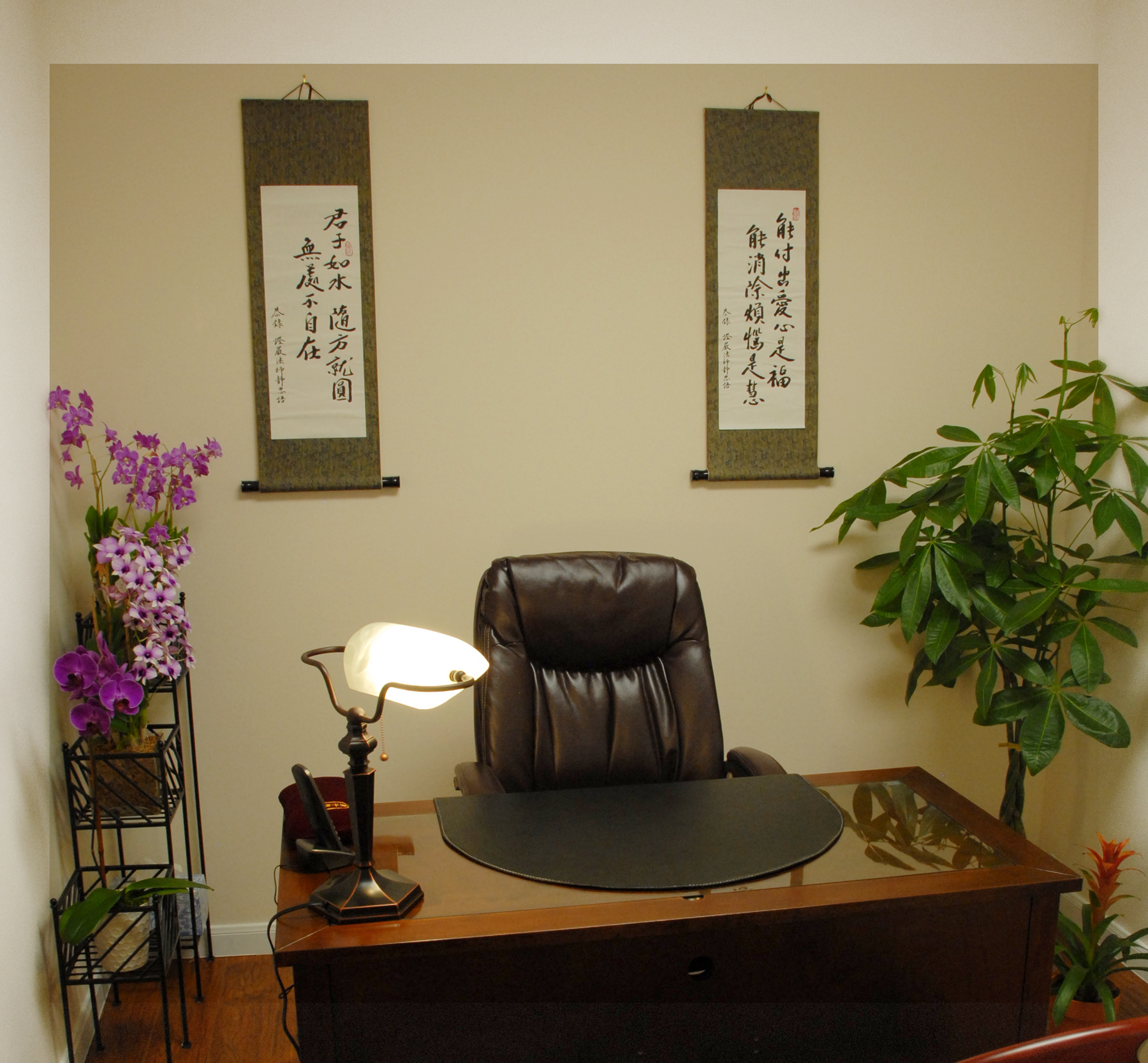 Yes Acupuncture Wellness Center image 3