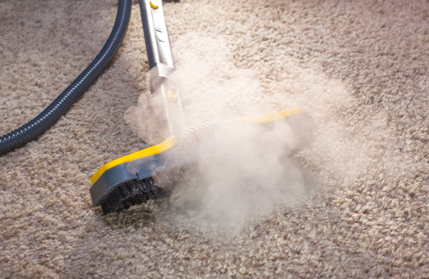 My Home Carpet & Upholstery Care image 1
