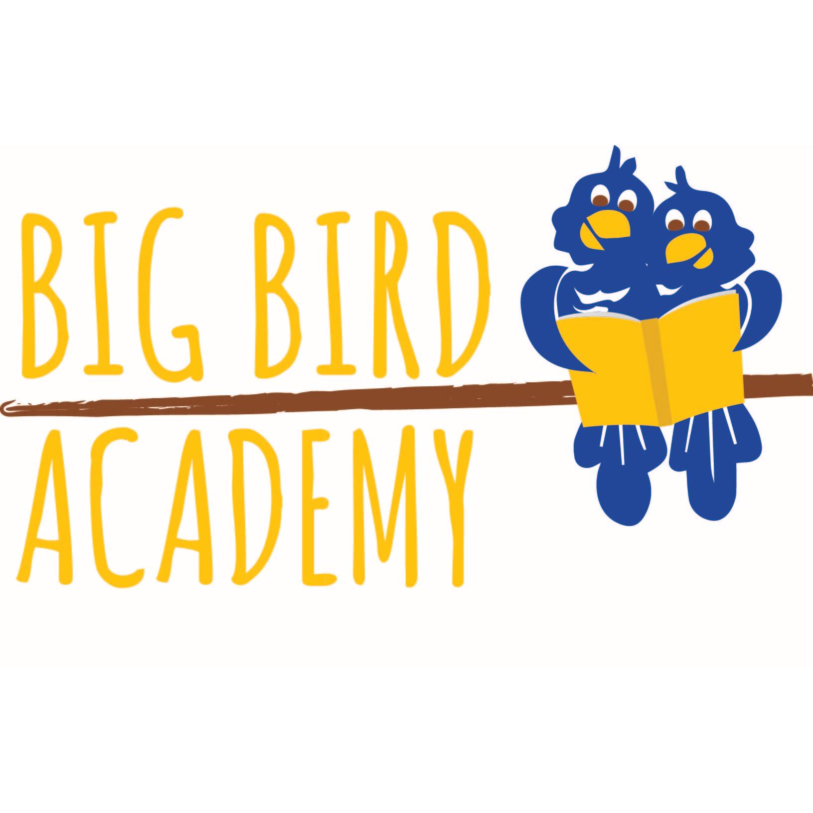 Big Bird Academy