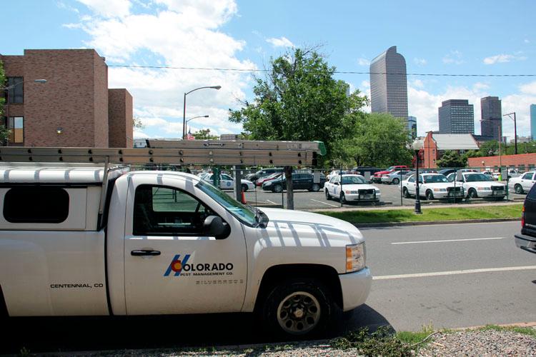 Colorado Pest Management image 4