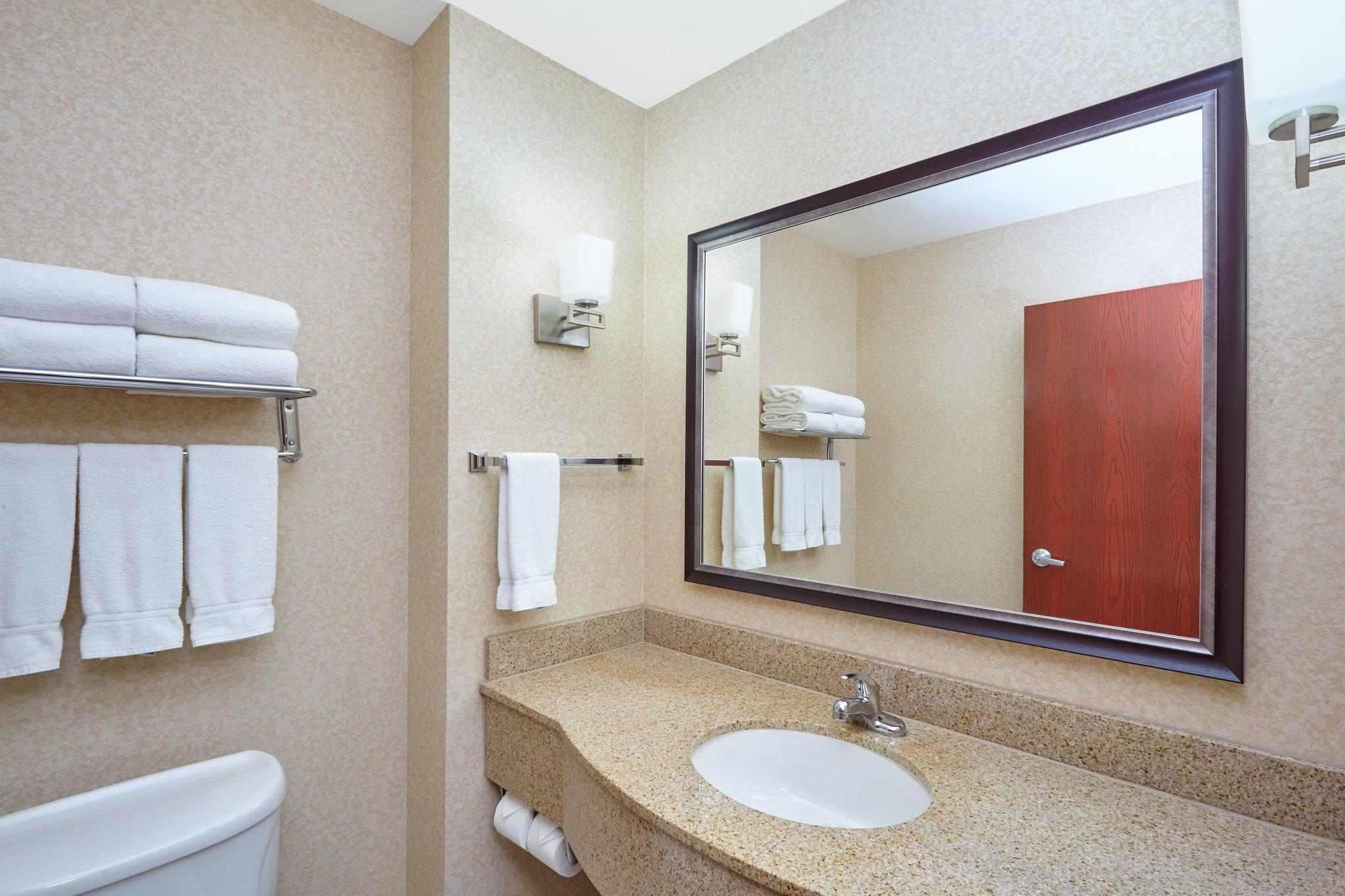 Holiday Inn Express & Suites Grand Rapids - South in Grand Rapids, MI, photo #14