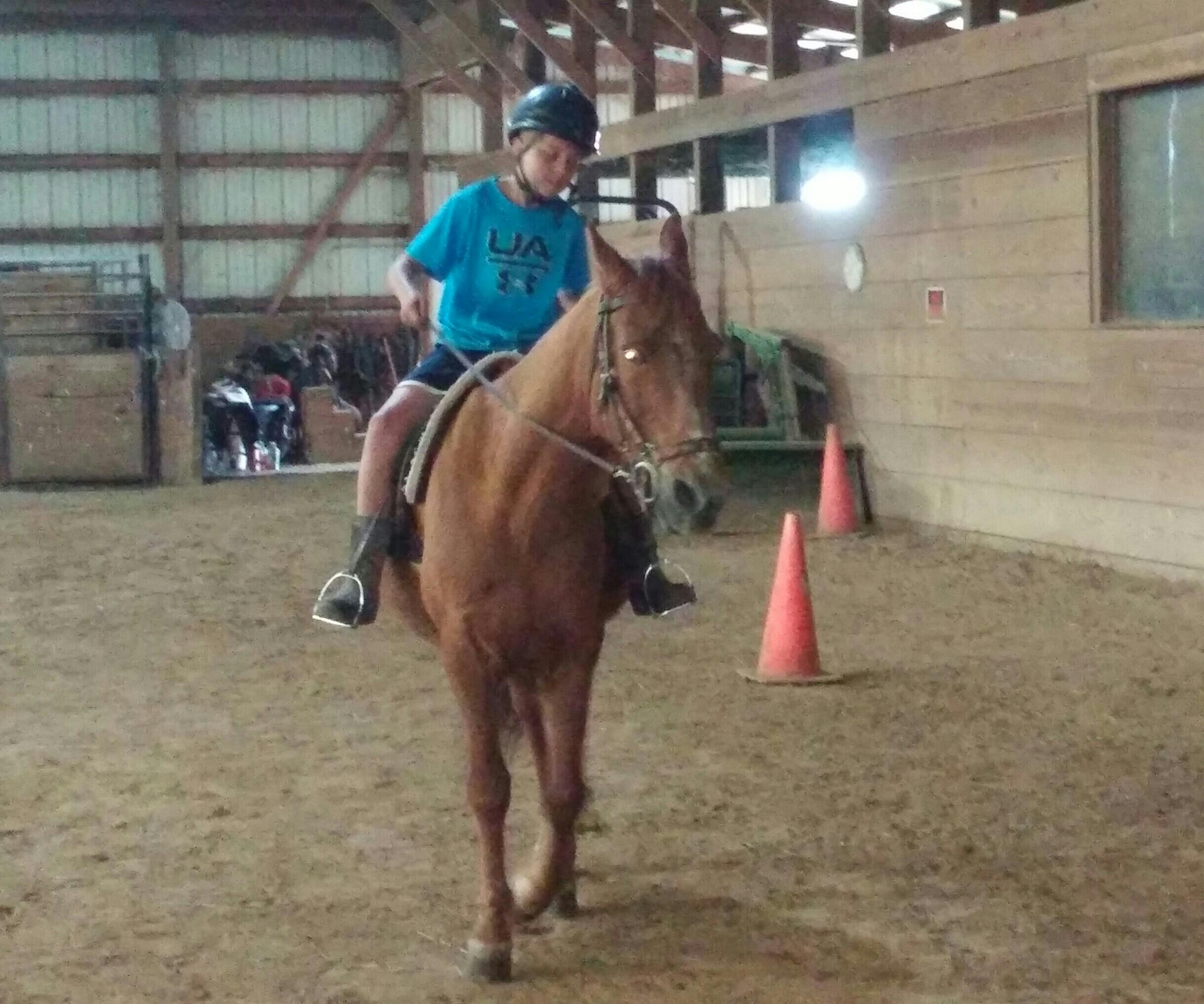 Wright-Way Equestrian Center Inc. image 2