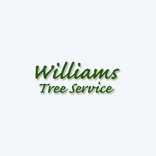 Williams Tree Services image 0