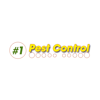 #1 Pest Control image 0