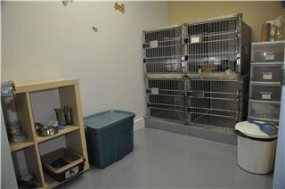 Clinique Vétérinaire Méliblack