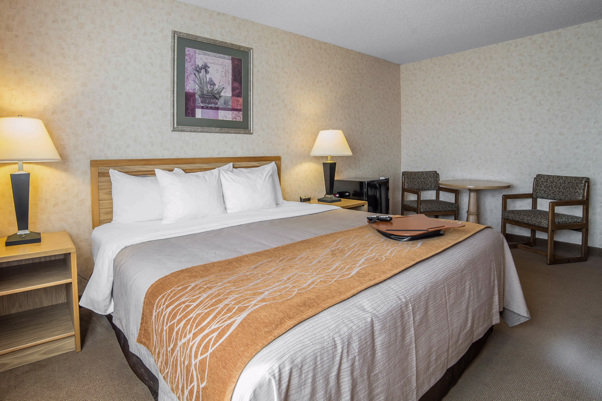 Comfort Inn In Dillon Mt 480 568 6