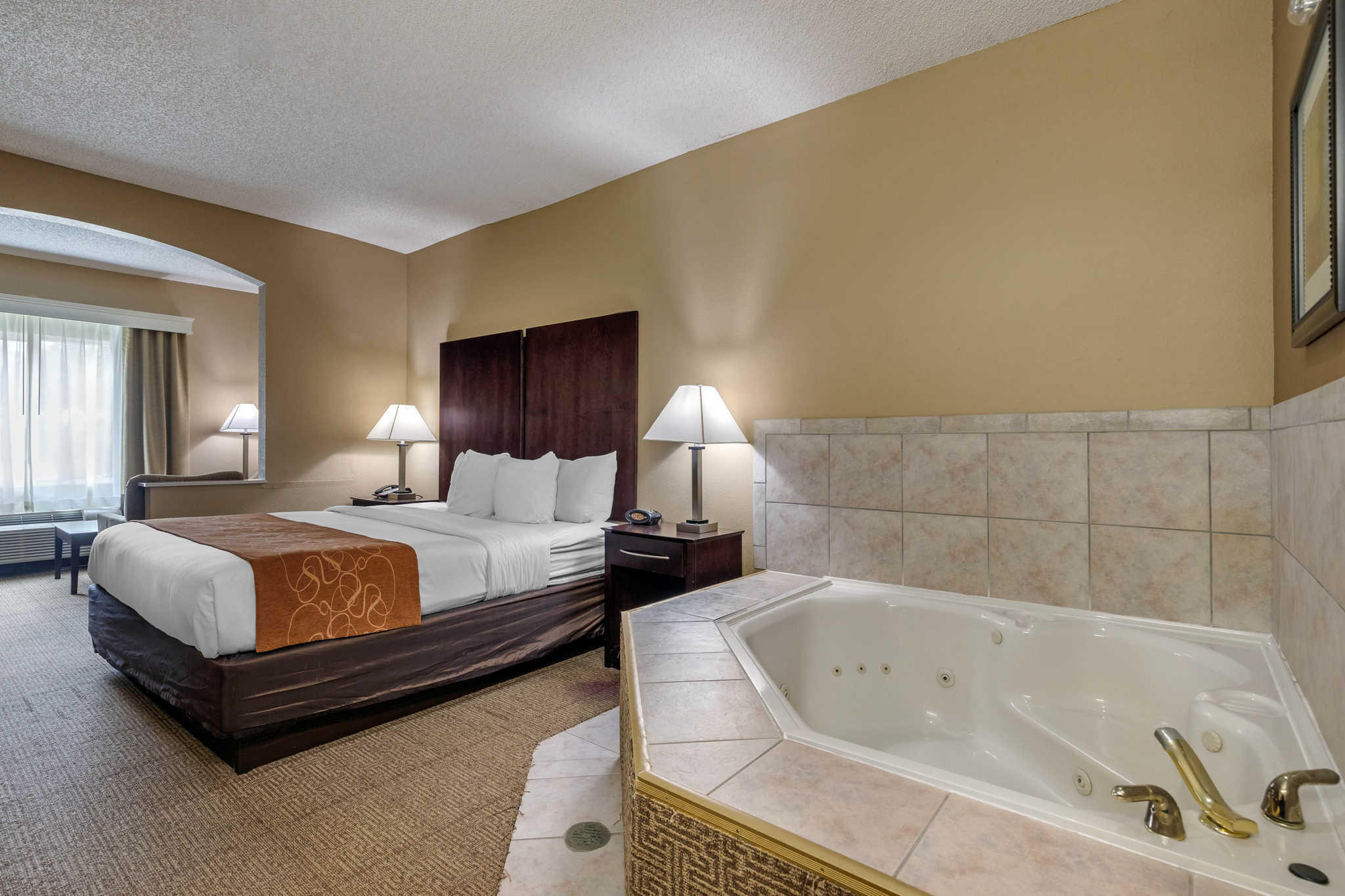 Comfort Suites The Colony - Plano West image 6