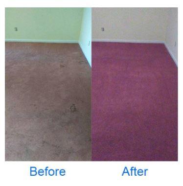 Deep Clean Carpet Clean image 3