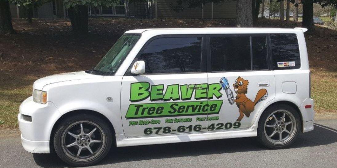 Beaver Tree Service Inc image 8