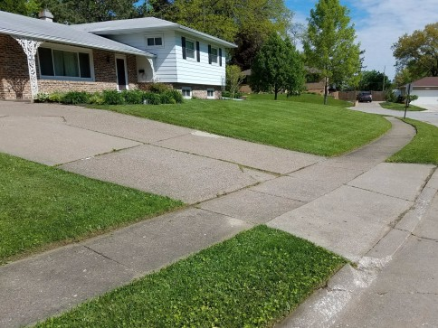 Picture Perfect Lawn Maintenance and Snow Removal image 4