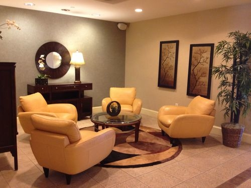 Holiday Inn Express & Suites Tampa-Anderson Rd/Veterans Exp image 1
