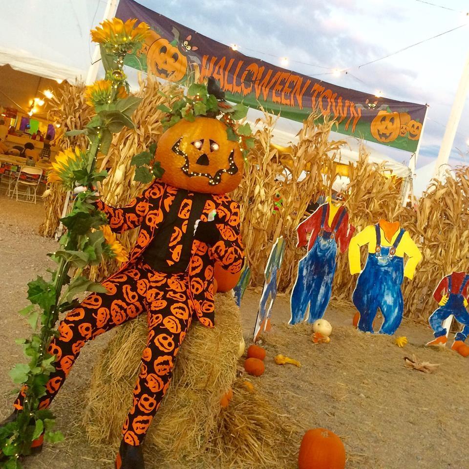 Halloween Town Pumpkin Patch