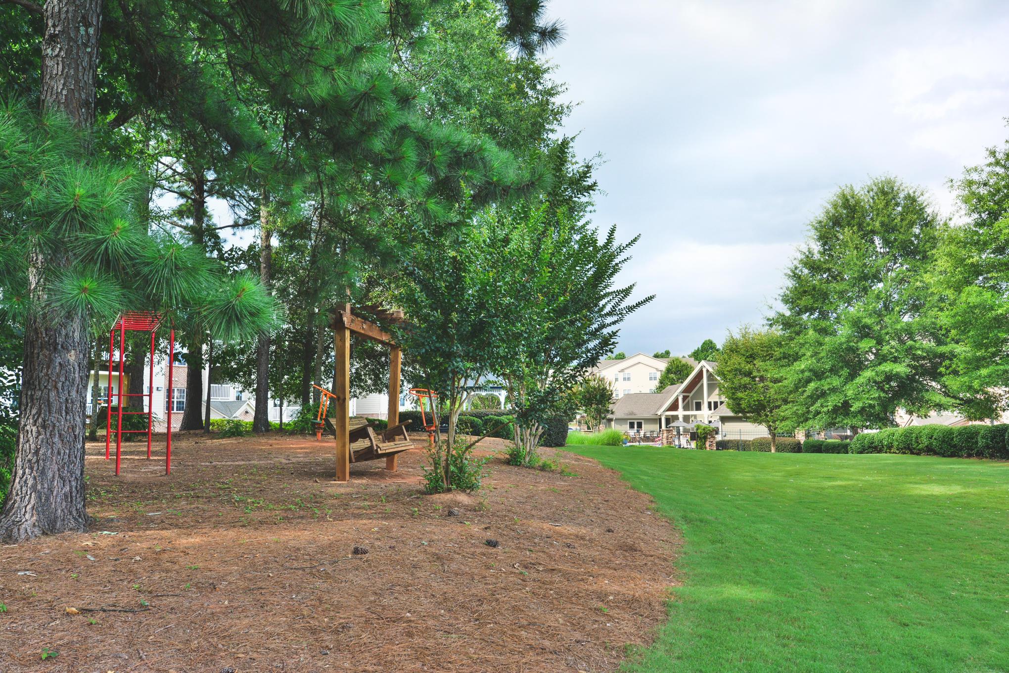 Tree Park image 2