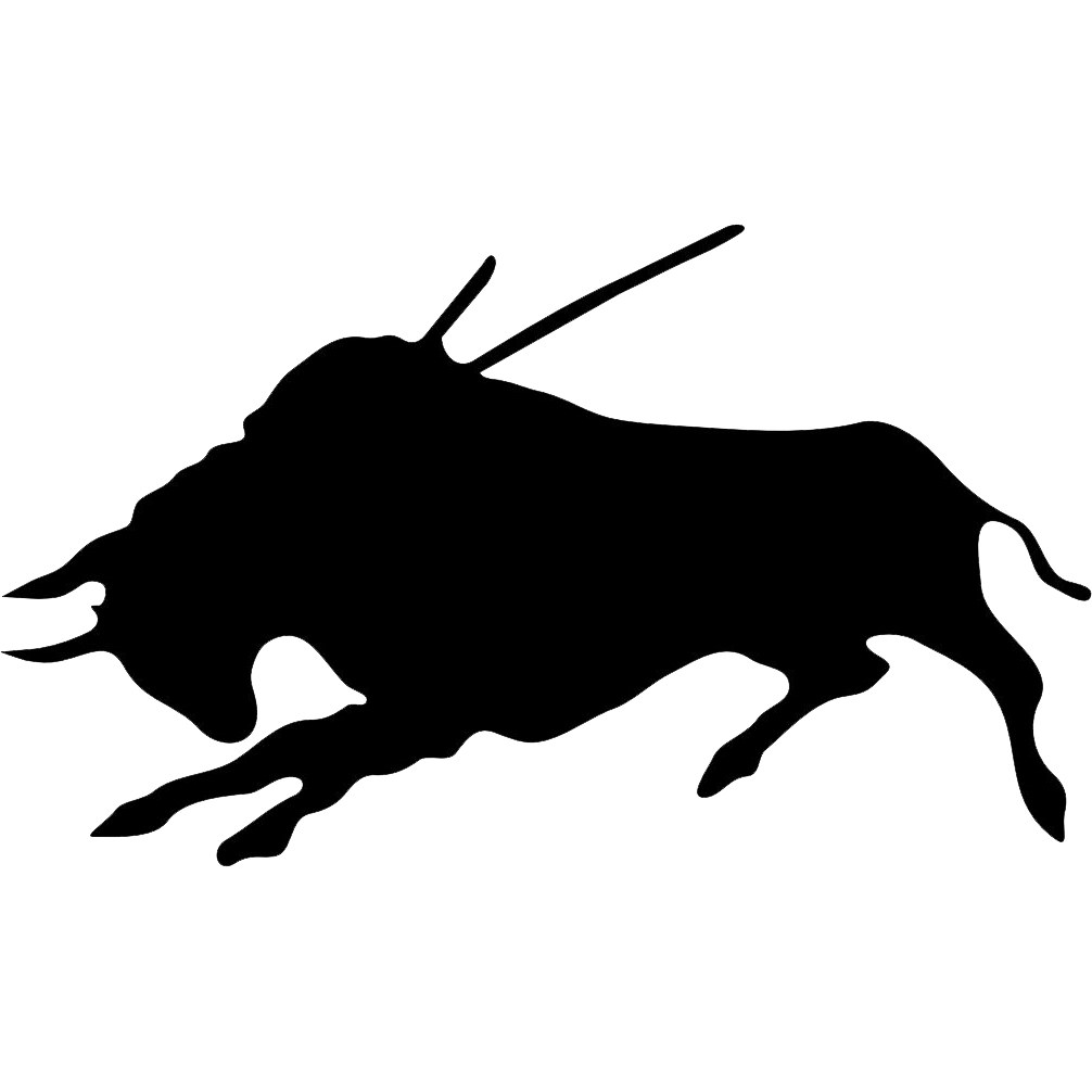 Black Bull Financial Services
