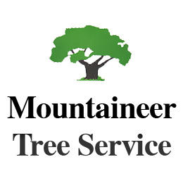 Mountaineer Tree Service