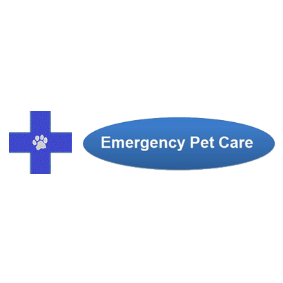 Emergency Pet Care - Annie Bowes DVM
