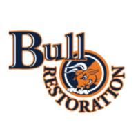Bull Restoration image 4
