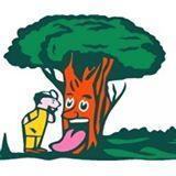 Jones Tree & Lawn Inc.