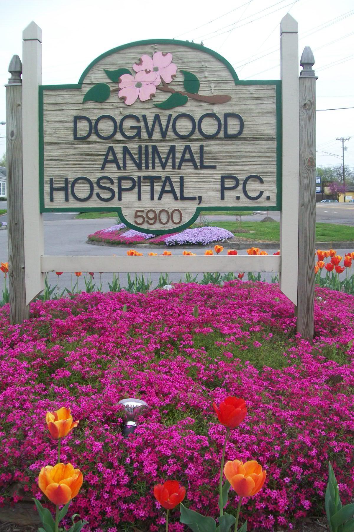 Dogwood Animal Hospital image 2
