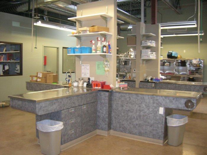 VCA Park Hill Animal Hospital image 4
