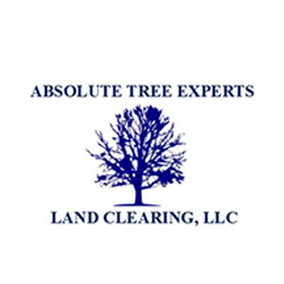 Absolute Tree Experts and Land Clearing LLC
