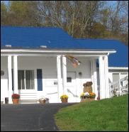 Waynesburg Animal Hospital image 0
