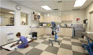 Hôpital Vétérinaire Des Prairies à Notre-Dame-des-Prairies