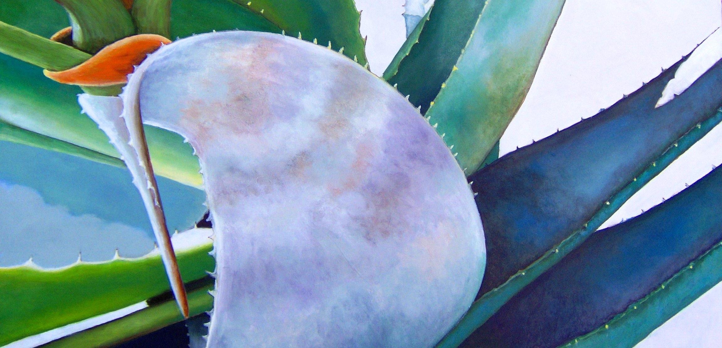 Gallery Lazzaro image 4