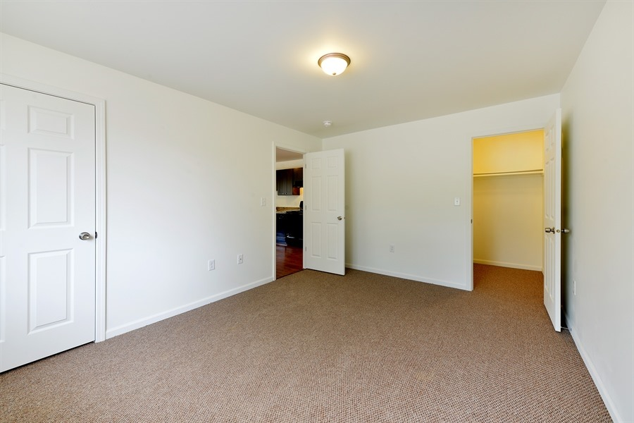 Pangea Pines Apartments image 3