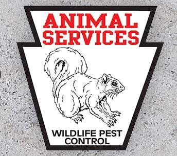Animal Services Wild Life Pest Control image 5