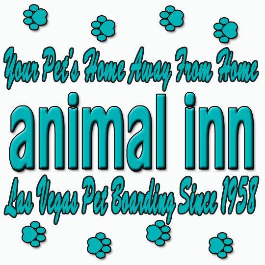 Animal Inn Pet Boarding Kennel - Las Vegas, NV - Kennels & Pet Boarding
