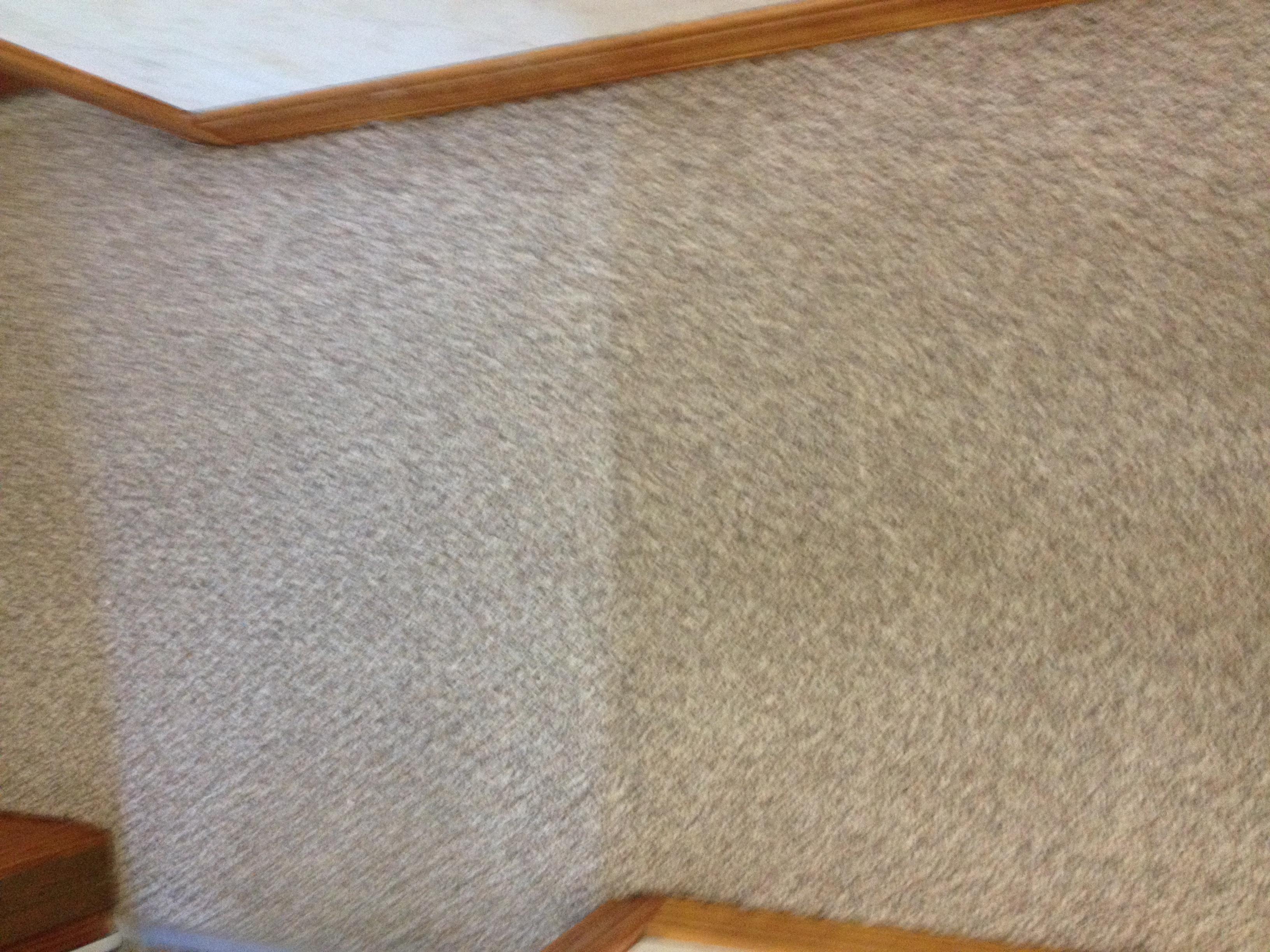 D&D Carpet Cleaning image 11